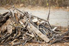a stockpile of sawed wood ready to use as firewood for winter heat - stock photo