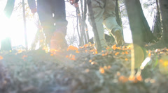 Walking on the leaves among the trees Stock Footage