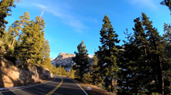 POV driving rural mountain country road spruce tree snow blue sky Sierra Nevada - stock footage