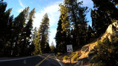 Stock Video Footage of POV drive along Route 108 sun flare Mountain Pass Sierra Nevada Wilderness area