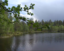 FEMUNDSMARKA, NORWAY: pan small lake in pine forest, national park Stock Footage