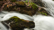 Stock Video Footage of Fast river in mountains time-lapse