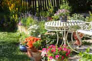 Stock Photo of beautiful summer garden
