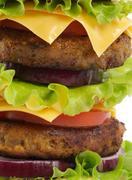 Tasty double cheeseburger close up Stock Photos