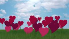 Green Field of  growing hearts. Stock Footage