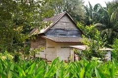Old wooden house in the forest. Stock Photos