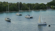 Stock Video Footage of sail boat, yacht, sails into harbour at port vila, vanuatu