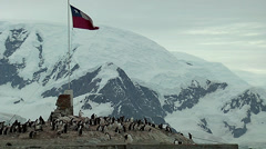 Chilean flag waving Stock Footage