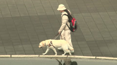 Blind woman and dog guide walking for the street Stock Footage