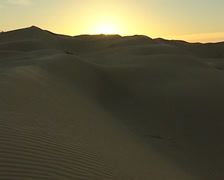 Dunes in the Sonoran Desert of Mexico Stock Footage