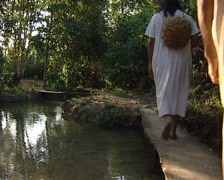 Lacandon walk through the jungle of Palenque in search of food. - stock footage