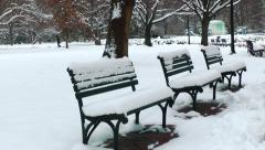 Snowy Park Benches, DC Stock Footage