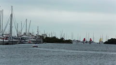 Sailboards Florida marina recreation HD 2267 Stock Footage