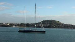 Ports of Auckland, sloop sailboat - stock footage