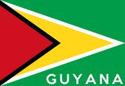 Stock Illustration of flag of guyana