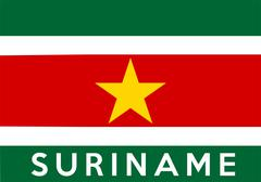 Flag of suriname Stock Illustration