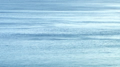 Calm waters of the Pacific Ocean Stock Footage