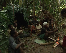 Pygmies in lunchtime Stock Footage