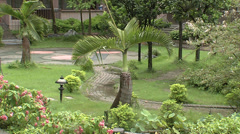Chung Hsing University gardens Stock Footage