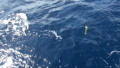 Argo buoy floating on the ocean Stock Footage