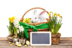 easter composition. - stock photo