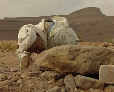 Berber catching a lizard in the Sahara desert Stock Footage