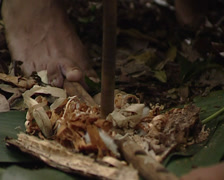 Lacandon making a fire using sticks in the jungle of Palenque Stock Footage