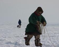 Nenet go hunting reindeers with lasso Stock Footage