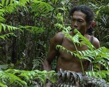 Mentawais go hunting Stock Footage