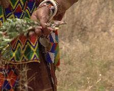Bushmen collecting Stock Footage