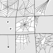 various spiders and webs - stock illustration
