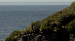View of the sea taken at the very top of a cliff Stock Footage