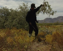 Native Seri making a lance in Tiburon island Stock Footage