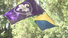 Scout flag waving Stock Footage