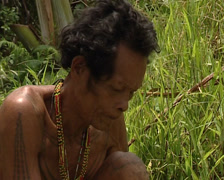 Mentawai cutting coconut Stock Footage