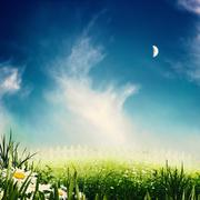 Beauty night on the meadow, abstract natural backgrounds Stock Photos