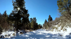 POV Zion Valley drive spruce trees winter snow sun flare National Park Utah USA Stock Footage
