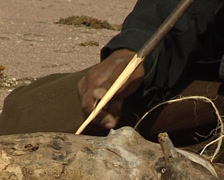 Native Seri making a lance in Tiburon island Stock Footage