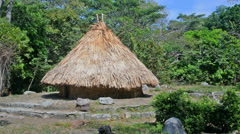 Kogi Indian House in Tayrona National Park Stock Footage