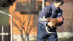 Man picks up the rooster and holds it firmly Stock Footage