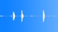 Birds, woodpecker, chickadees. - sound effect