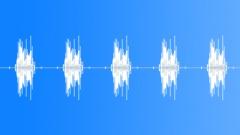 Birdsong5. Sound Effect