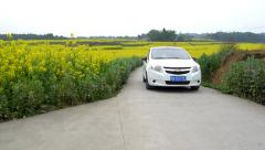 The white Chevrolet sail car drives through the yeellow rape flower field Stock Footage