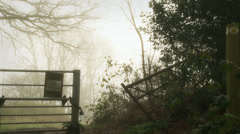 Countryside gate in the fog (dolly) Stock Footage