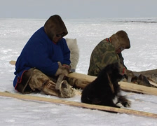 Making a sled Stock Footage