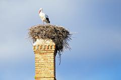 Stock Photo of nest with a stork on top of an abandoned factory chimney.