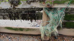 Sea Groin With Netting Stock Footage