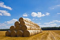 stacked hay bales - stock photo