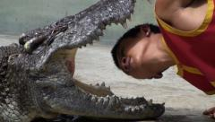 The Most Dangerous and Insane Crocodile Show in the World! Stock Footage