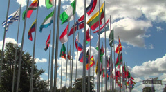 Flags of the world in the jamboree entrance Stock Footage